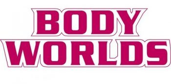 CELEBRATE WITH BODY WORLDS