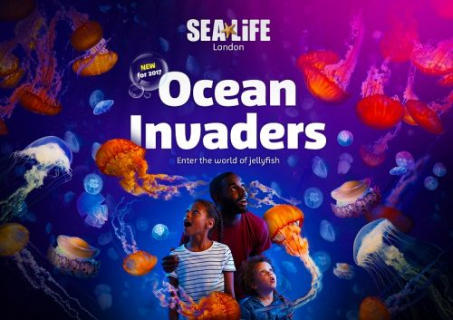 Ocean Invaders: Enter the world of the jellyfish header image