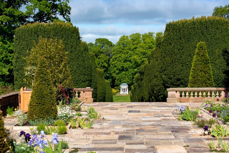 hill cas garden
