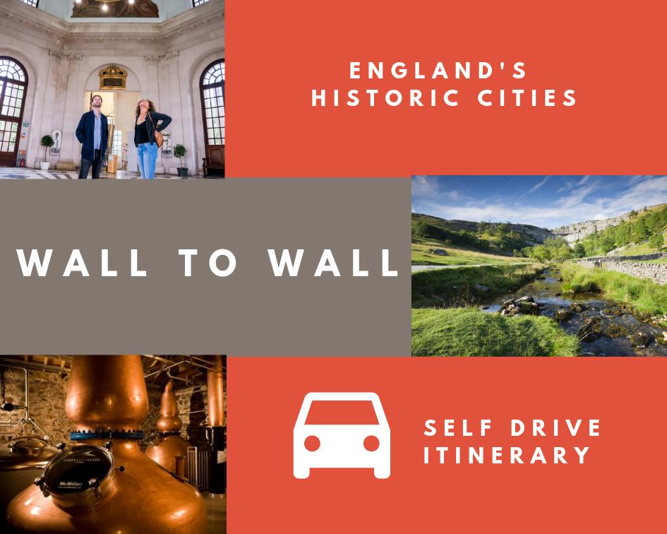 _walltowall_collage_selfdrive